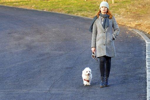 Girl, Woman, Young, Dog, Fur, White