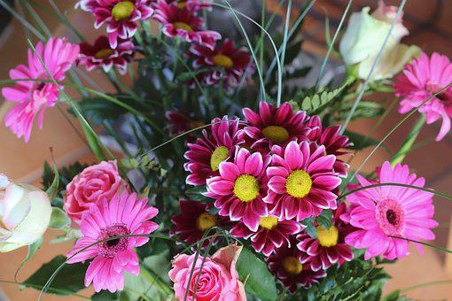 Bouquet Of Flowers, Gerbera, Pink