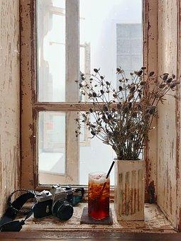 Lemon Tea, Camera, Vase, Flower, Bouquet