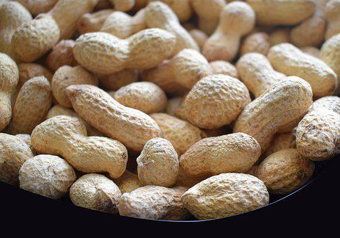 Delicious, Closeup, Food, Groundnuts