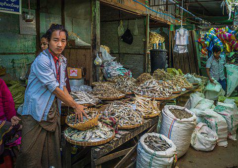 Market Heho, Nianmar, Fish, People, Fish Stop, Dry Fish