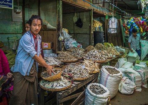 Market Heho, Nianmar, Fish, People