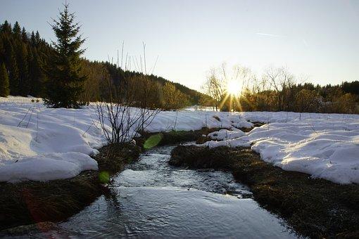 Jura, Mountain, Sun, Forest, The Scale, Romance, Hill