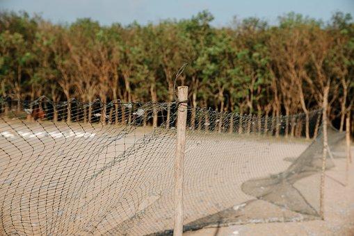 Field, Mesh Fence, Barrier, Landscape