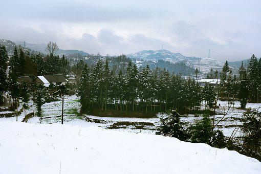 Snow, Mountain, Woods, Village, Cloudy Day, Winter