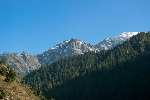 Mountains, Trees, Kashmir, Landscape, Nature, Travel