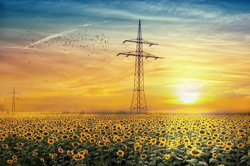 Landscape, Sunflowers, Sky, Clouds, Electrical Towers