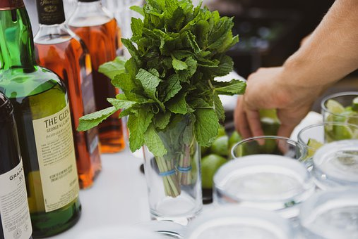 Cocktails, Drinks, Bar, Party, Refreshment, Bartender