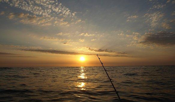 Midnight Sun, Last Litter, Fish, Fishing At Night