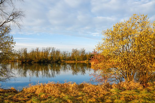 Morning, Sunrise, Lake, Water, Mirroring