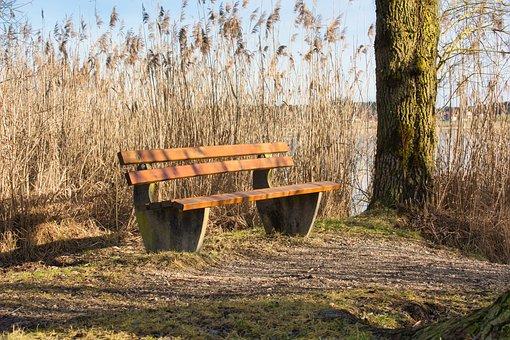 Bench, Nature, Break, Bank, Rest, Seat