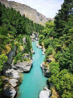 Queentown, Shotover River, River, Trees