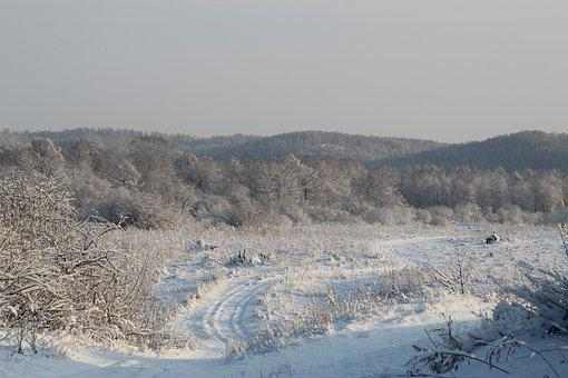 Road, Winter, Snow, Forest