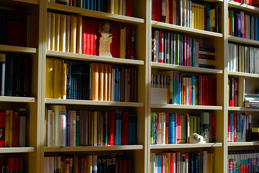 Bookshelf, Books, Shelf, Library, Literature, Knowledge