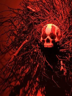 Skull, Halloween, Death, Skeleton, Scary, Dead, Evil