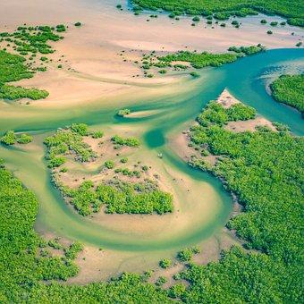 Aerial, Senegal, Africa, Above, Drone, River, Mangroves