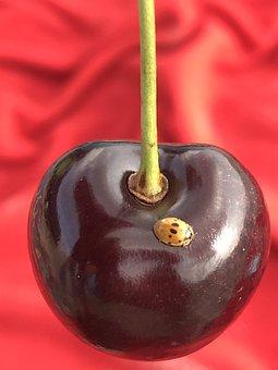 Cherry, Fruit, Stone Fruit, Sweet Cherry, Red, Ripe