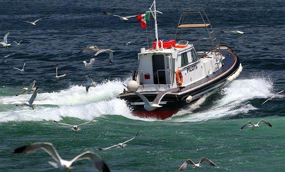 Pilot Boat, Italy, Shipping, Napoli, Naples, Italia