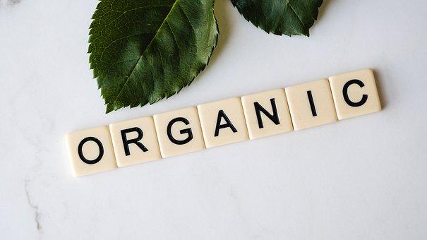Organic, Herbal, Healthy, Natural, Leaf, Medicine