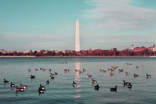 Washingtondc, Monument, Memorial, Landmark, President