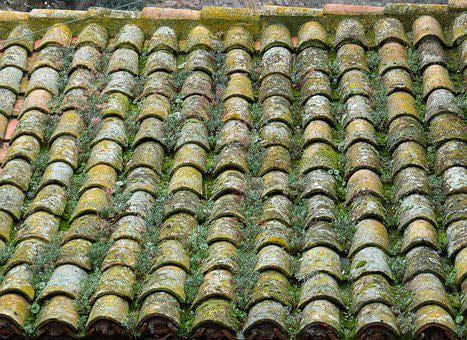 Roof, Texas, Arab Tiles, Moss, Traditional
