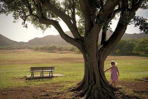 Child, Tree, Girl, Dreamy, Play, Nature