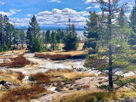 Yellowstone, Yellowstone National Park, Wyoming, Nature
