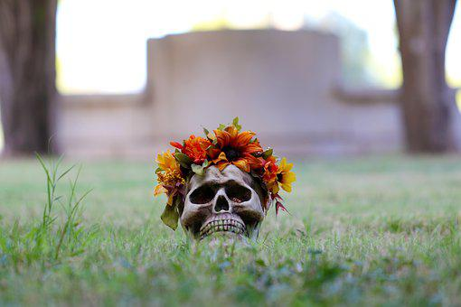 Skull, Skulls And, Flowers And, Grass, Cemetery, Fall