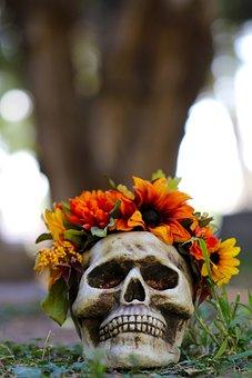 Halloween, Halloween Poster, Scary, Skull, Skulls And