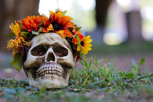 Halloween, Skull, Diy, Diy Skull, Skulls And Flowers