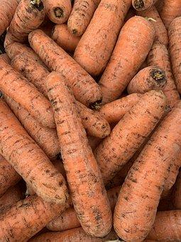 Carrot, Earth, Veg, Vegetable, Vegan, Food, Vegetables