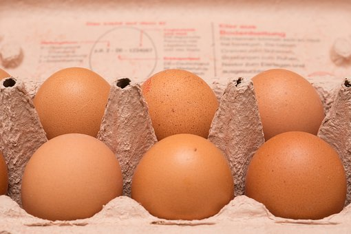 Egg, Hen'S Egg, Bio, Food, Nutrition
