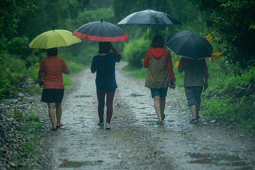 Umbrella, Women, Color, Rain, People, Wet, Female