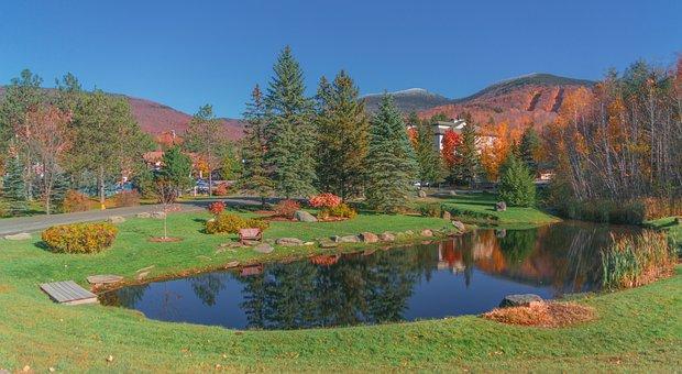 Vermont, Foliage, Snowcapped, Mountains