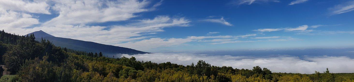 Tenerife, Teide, Panorama, Sea, Stratus, Clouds, Forest
