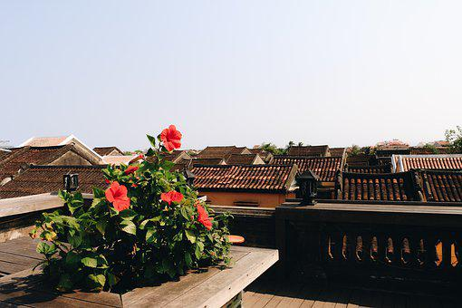 The Ancient Town, Hoi An, Vietnam, Neck, Old