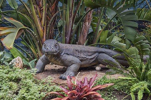 Varano, Lizard, Reptile, Monitor, Exotic, Statue