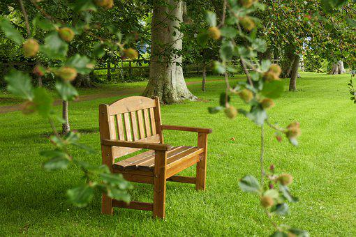 Relax, Solitude, Garden, Nature, Park, Peaceful, Seat