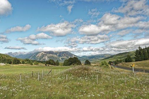 New Zealand, Mount Richmond Forest Park, South Island