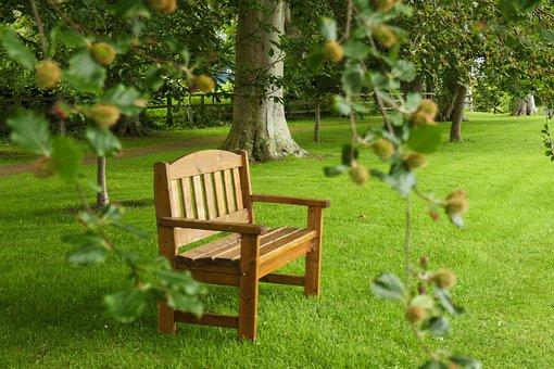 Relax, Solitude, Garden, Nature, Park