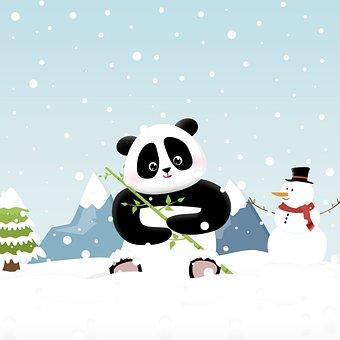 Panda, Winter, Blue, Snow, Cold, Seasonal, Cute, Zoo