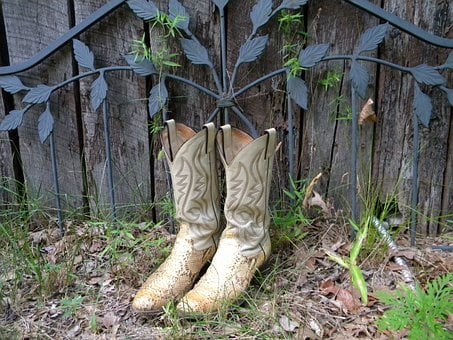 Cowboy Boots, Boots, Garden, Boot, Cowboy, Leather