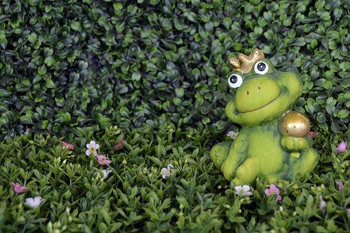Frog, Crown, Frog Prince, Florencia, Green, Gold Ball