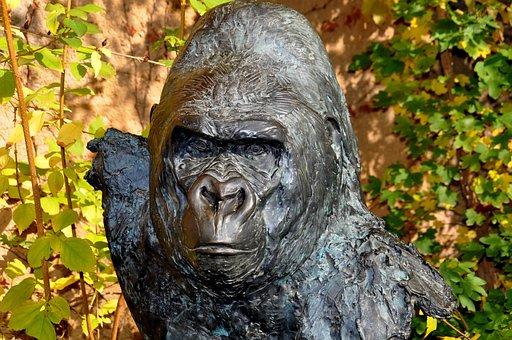 Gorilla, Bronze Sculpture, Wolfgang Weber, Matze