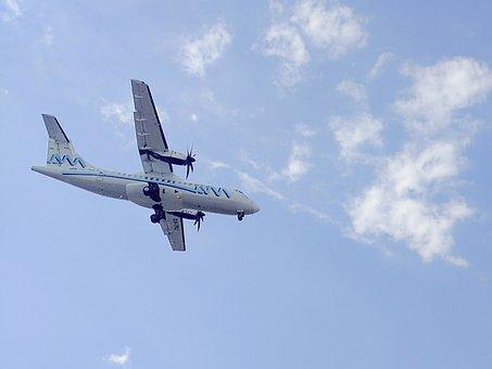 Plane, Hercules, Sky, Aviation, Marina, Flight