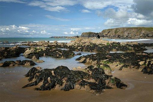 Annestown, Ireland, Copper Coast, Scenic, Seascape