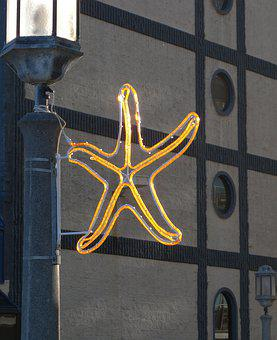 Seaside, Oregon, Starfish, Star, Neon, Streetlight