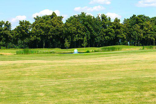 Golf, Game, Golf Course, Grass, Trees, Background