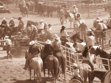 Crow Fair, Rodeo, Montana, Usa, America, Horses