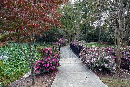 Garden, Park, Bridge, Walkway, Path